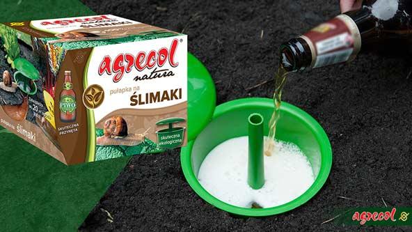 zwalczanie ślimaków, sposób na ślimaki