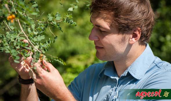 Ogród botaniczny – wyzwanie dla biologów