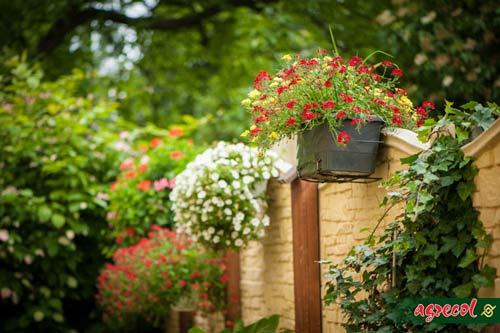 czego nie robić w ogrodzie, podstawy pracy w ogrodzie, poradnik początkującego ogrodnika