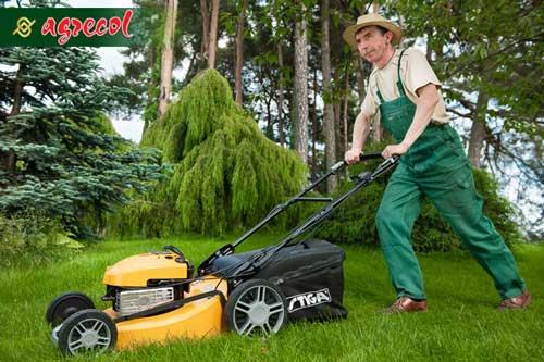koszenie trawnika, trawnik, pielęgnacja trawnika