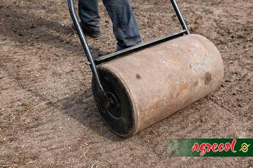 trawnik, zakładanie trawnika, przygotowanie gleby po trawnik