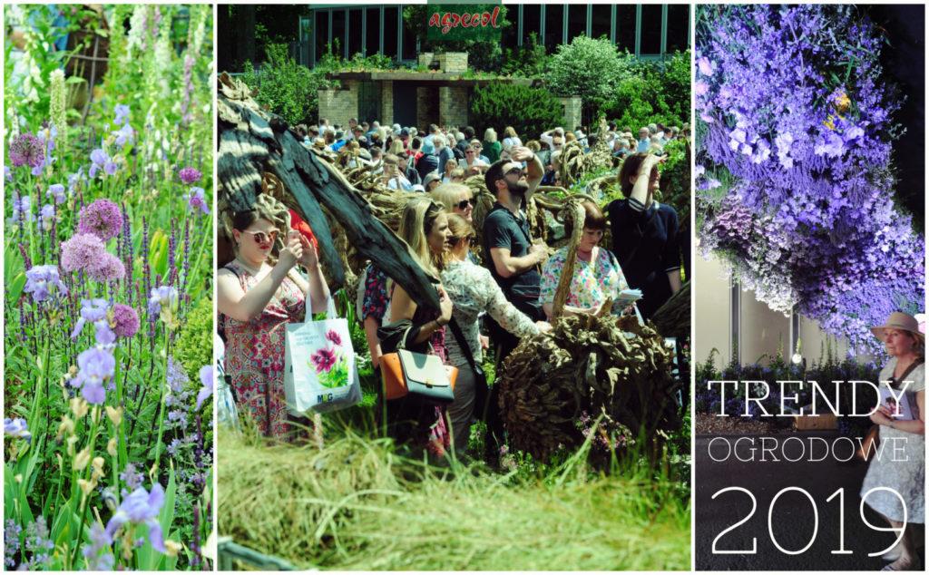 trendy ogrodowe2019 - chelsea flowershow(1)